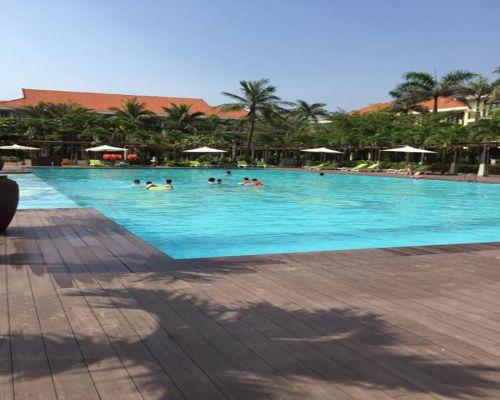 Sàn gỗ bể bơi chính hãng