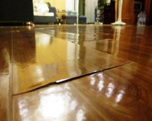 Sàn gỗ bị phồng rộp