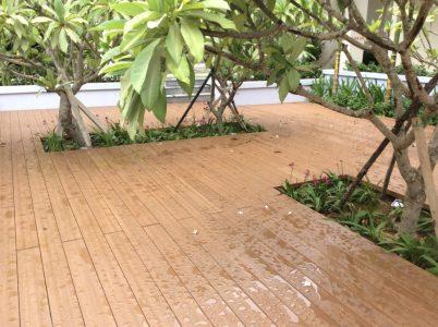 sàn gỗ sinh thái